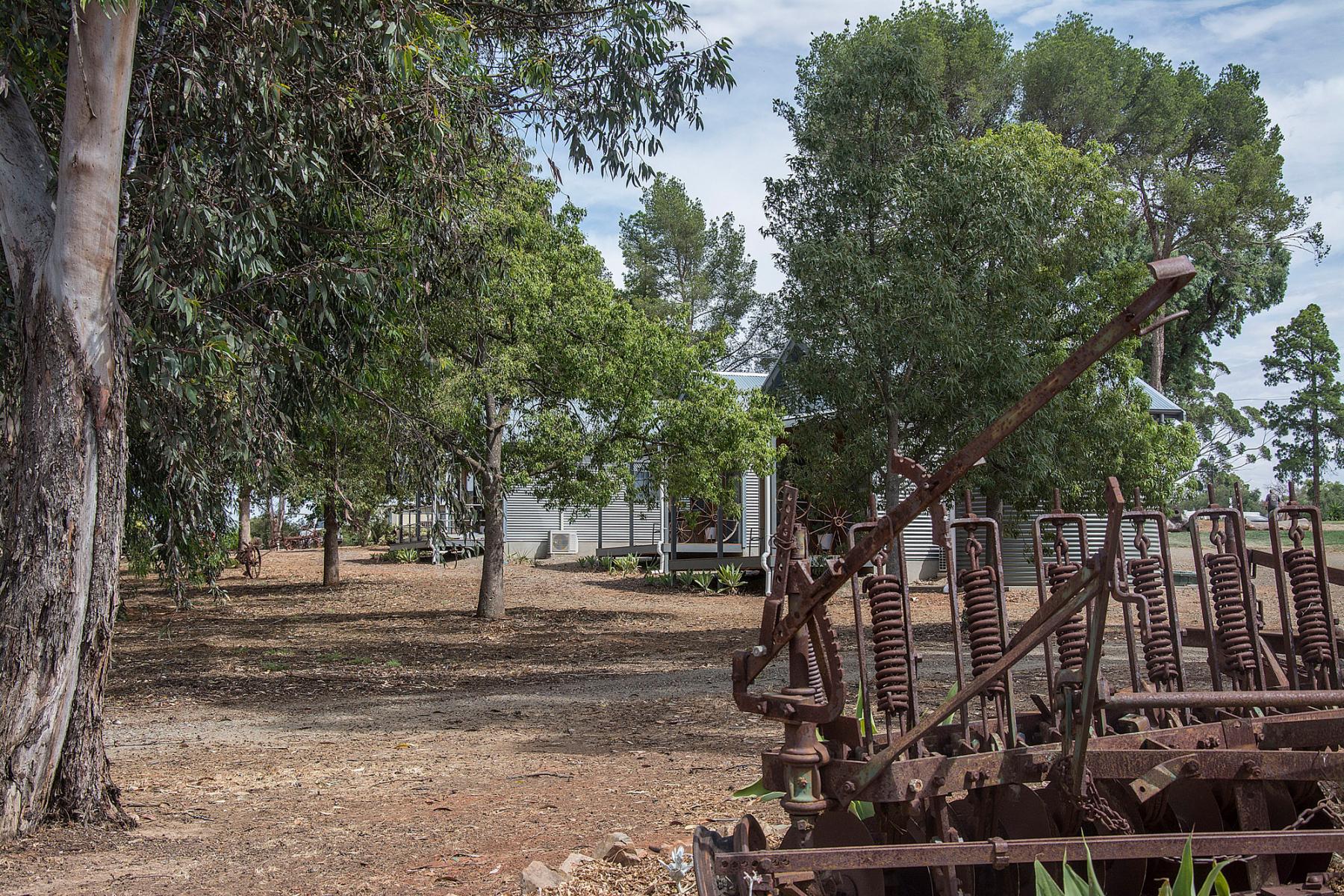 143Kapunda-Tourist-Park